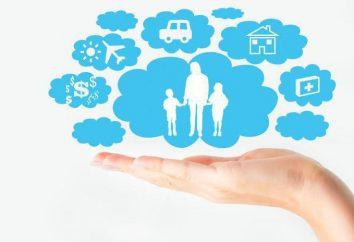 Définition, les fonctions, les caractéristiques et le but de l'assurance