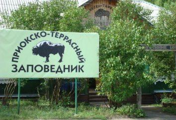 Il famoso Oka schiera Reserve? Animali e piante riserva Oka Terrasny