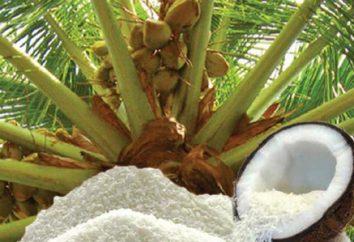 Kokos: szkody i korzyści, kalorie, wartość odżywcza
