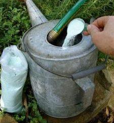 « Agricola » – engrais pour les légumes, baies et plantes ornementales