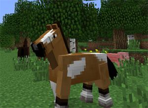 Come Costruire Un Cavallo.Come Fare Un Cavallo In Meincraft Obbediente