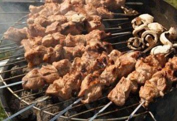 Qual é a melhor carne para pegar os kebabs de Shish: carne de porco, carne, cordeiro ou aves de capoeira?