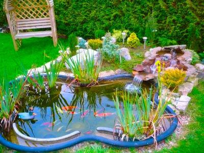 Come creare un laghetto in giardino sul sito for Stagno giardino