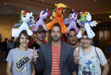 Chi sono tua armatura? fan fandom dello show My Little Pony