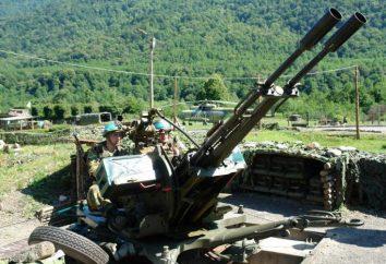 feriados militares. Dia de forças de manutenção da paz russas