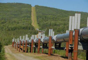 Posa della conduttura: tecniche, alle attrezzature. zona di sicurezza Pipeline