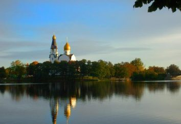 Stadt Sestroretsk: Sehenswürdigkeiten Beschreibung