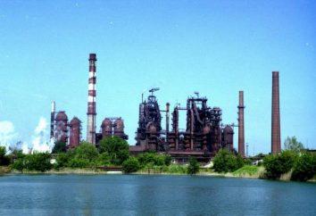 "OAO ""Lipetsk Iron Works"" Svobodny Sokol ""»: la storia, la produzione, i prodotti"