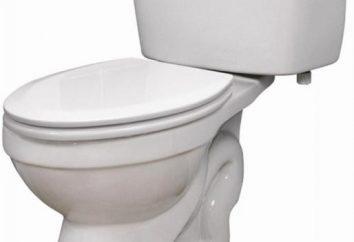 Armatura per i servizi igienici: tipologie e caratteristiche