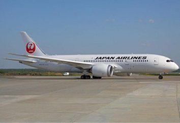 Japan Airlines (Japan Airlines): descripción, comentarios