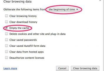 la pulizia automatica della cache del browser
