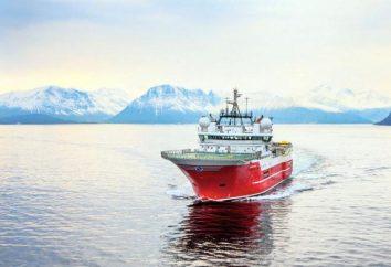 Jenisej Bay: Historia odkrycia, opis i mieszkańcy stawu