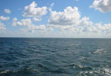 Quelle est la mer du sud de la Russie? Description de la mer Noire, la mer Caspienne et d'Azov