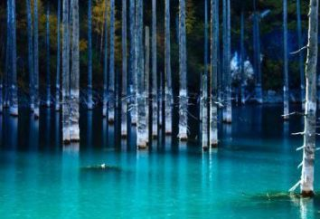 Ciò che è interessante Kaindy – lago in Kazakhstan