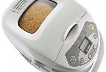 Chleb maker Gorenje BM900W: opinie, instrukcje