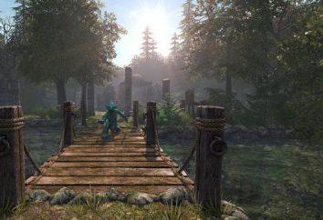 Legend of Grimrock 2: Lösungsweg, Magie, Tipps, Codes