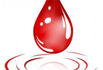 Le don de sang: avantages et inconvénients. Où et comment faire un don de sang
