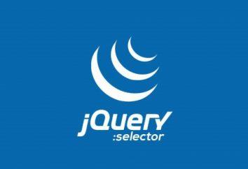 Dlaczego potrzebujemy i jak nagrywać selektor jQuery?