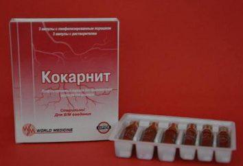 """Las inyecciones """"Kokarnit"""": la instrucción. """"Kokarnit"""": opiniones, analógica"""