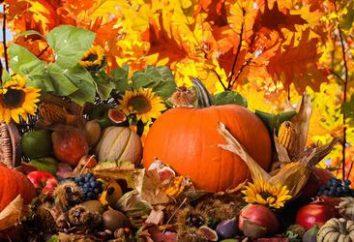 Riddles à propos de l'automne. Petits casse-tête sur l'automne pour les enfants