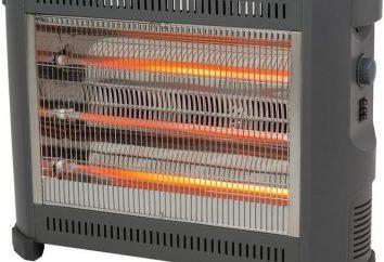 Eléctrica de ahorro de energía para la casa – la más segura y rentable. Explorar las especies