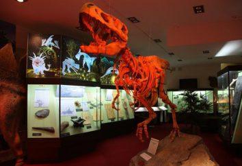 Vyatka Museo Paleontologico: descrizione, indirizzo e orario di lavoro