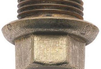 kołnierzowe stub cechy: zakres i konstrukcyjne