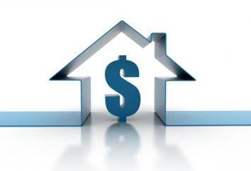 ¿En qué año se formó el mercado inmobiliario ruso? Estructura y función del mercado inmobiliario