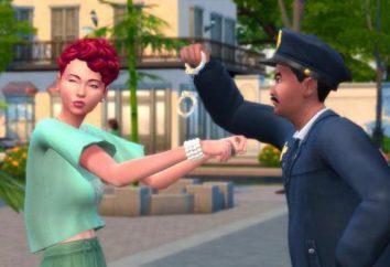 """Utilice el código para mejorar la carrera en """"The Sims 4"""""""