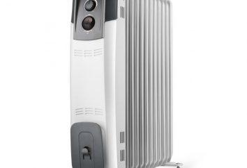 convettori Riscaldamento elettrico: recensioni, varietà e principio di funzionamento