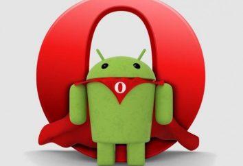 Wybrać najlepszą przeglądarkę dla Androida