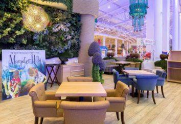 """""""Monster Hills"""" restauracja w """"floty"""" (Moskwa): zdjęcia i opinie"""
