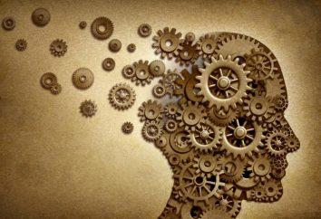 Co to jest odbicie w psychologii? Pojęcie i istota refleksji