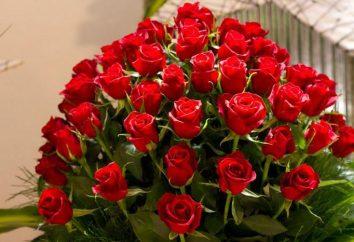 Interprétation des rêves: roses rouges. Le sens et l'interprétation du rêve