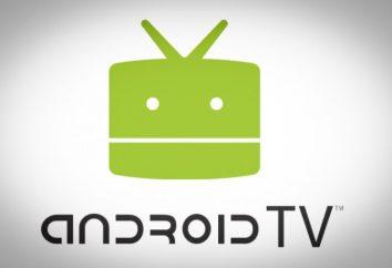 TV Android (prefix): ogólna charakterystyka i zdjęcia