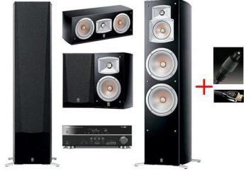Sistema di altoparlanti Yamaha NS 555: specifiche e recensioni
