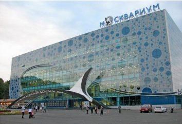 Moskau Delphinarium – ein einzigartiger Entertainment-Komplex in der Hauptstadt von Russland
