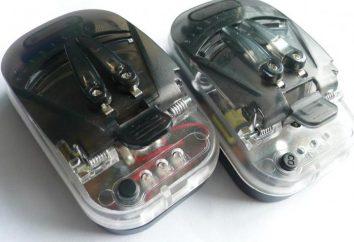 Universal-Ladegerät: wie die Batterieleistung wiederherzustellen