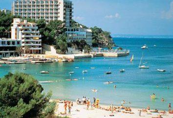 Modne opinii Mallorca obiecują niezapomniane wakacje