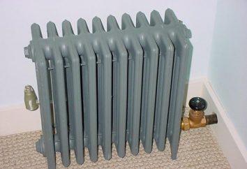 Grille de protection et de décoration sur le radiateur de chauffage