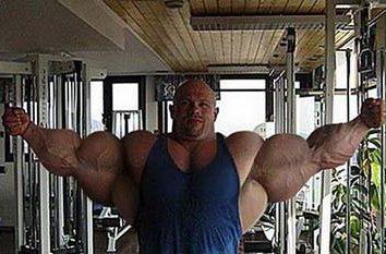 Steroidi – è la costruzione del muscolo …
