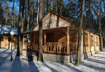 """""""Forêt Fairy Tale"""", Voronezh photos et commentaires. Repos en hiver et en été"""
