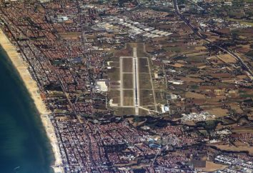 Arrivée à l'aéroport de Rimini, sa vie, comment se rendre à la ville