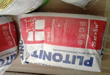 """Cole """"Plitonit In"""": uma revisão das vantagens materiais do uso de"""