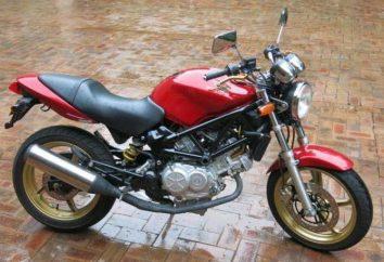 250 VTR (Honda): specifiche tecniche, recensioni, revisioni, foto