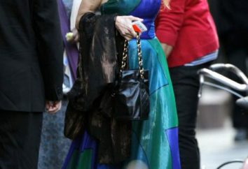 Sarah Jessica Parker: Le style de la célèbre actrice. Ce qui distingue le style de Sarah Dzhessiki Parker?