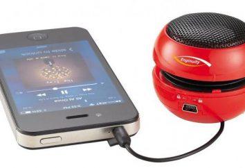Najlepsze przenośne głośniki z pamięcią flash i radiem