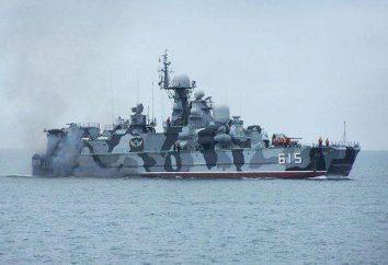 """""""Bora"""" – buque de misiles aerodeslizador: descripción, especificaciones y comentarios"""