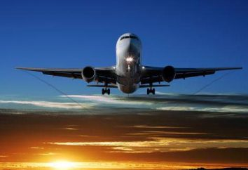 Como muitas vezes caem aviões? Estatísticas avião cai