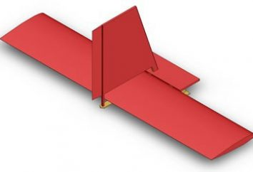O estabilizador da aeronave. Dispositivo geral e controle de aeronave